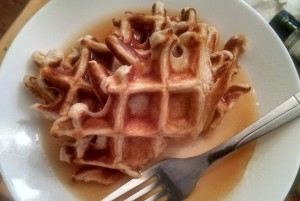 Trim Healthy Mama Waffles for Fuel Cycle Day E fuel